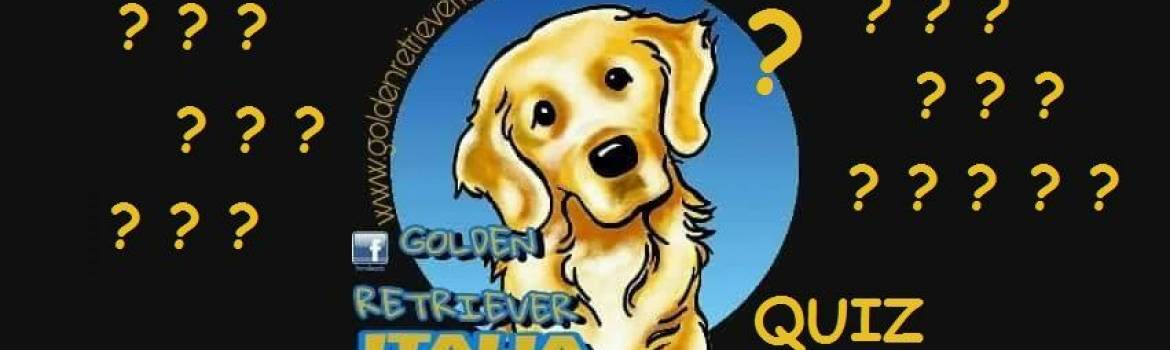 I quiz di Golden Retriever Italia   2